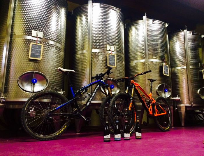 Mountain Bike & Wine
